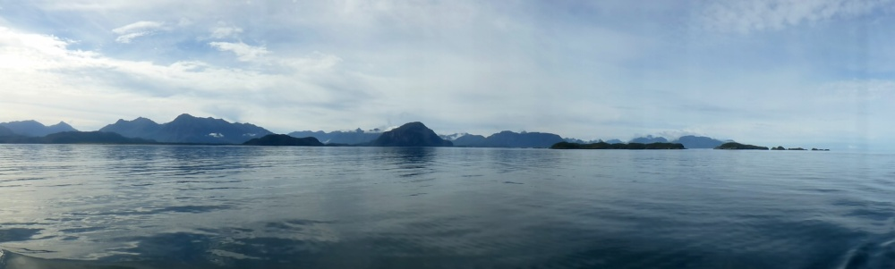 La tranquilidad impera por todos lados, cualidad que escoge la ballena austral para dar a luz en estas aguas.