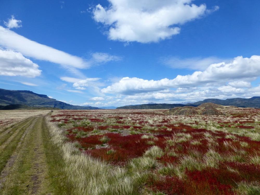 Los llanos protagonizaban el paisaje del primer día de caminata.