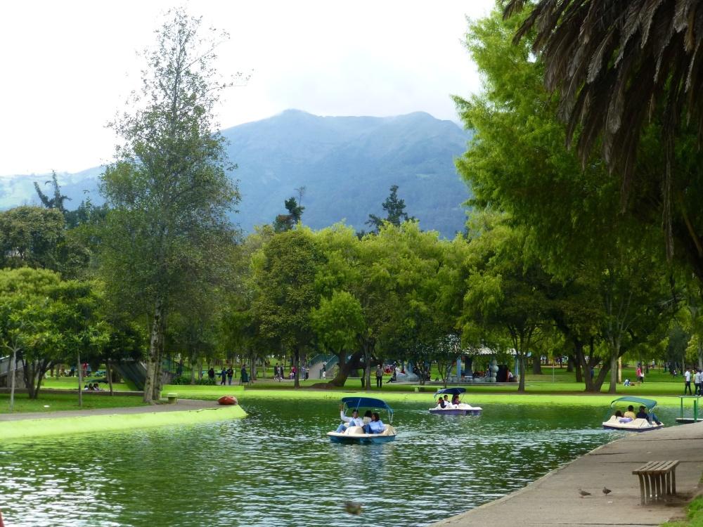 Parque Carolina: un oasis de tranquilidad en la ciudad nueva.