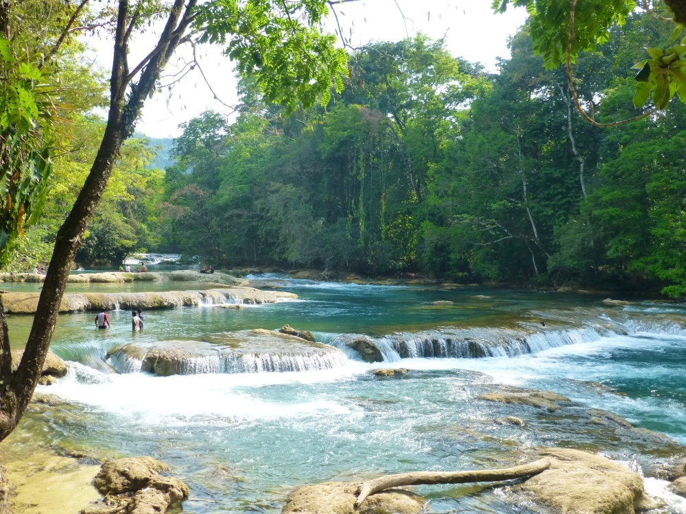 Palenque y agua azul un mundo por recorrer for Piscinas naturales rio malo